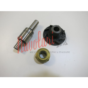KIT REVISIONE POMPA ACQUA FERRARI 206 - 246 / WATER PUMP REVISION KIT